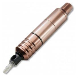 cheyenne pen bronze